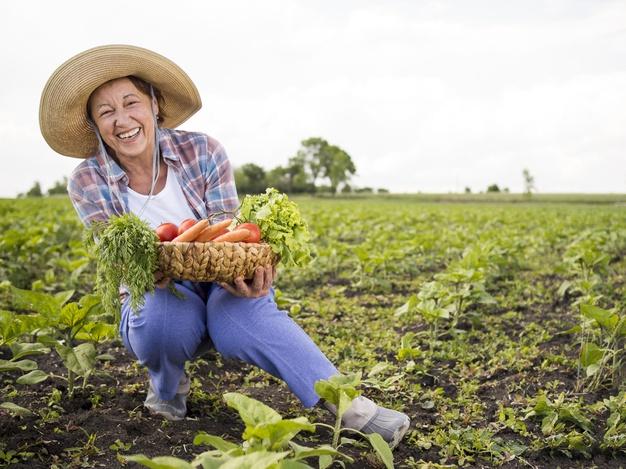 Certificado de Agricultor familiar por competência: veja como obter