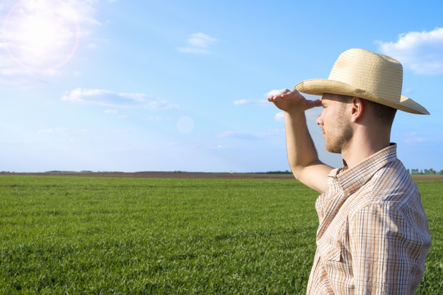 Certificado de Agricultor agroflorestal por competência: veja como obter